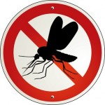 Fliegendecke - Fliegenschutz