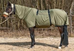 Fliegendecke für Pferd mit Sommerekzem
