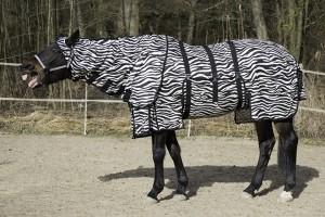 11499_7 - Fliegendecke Zebramuster